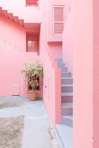 La Muralla Roja van