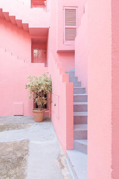 La Muralla Roja van Anki Wijnen