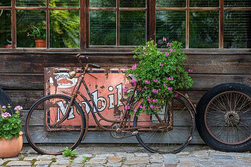 old bicycle sur