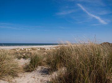 Duinen, strand en zee, Terschelling von Rinke Velds