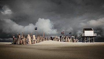 Lebendiges Haus Vlieland von Lars Beekman