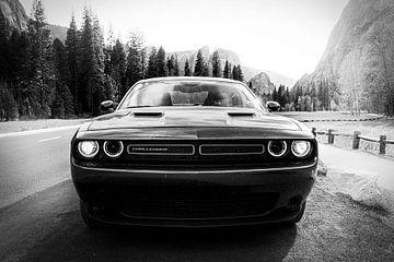 Dodge Challenger von Erik de Klerck
