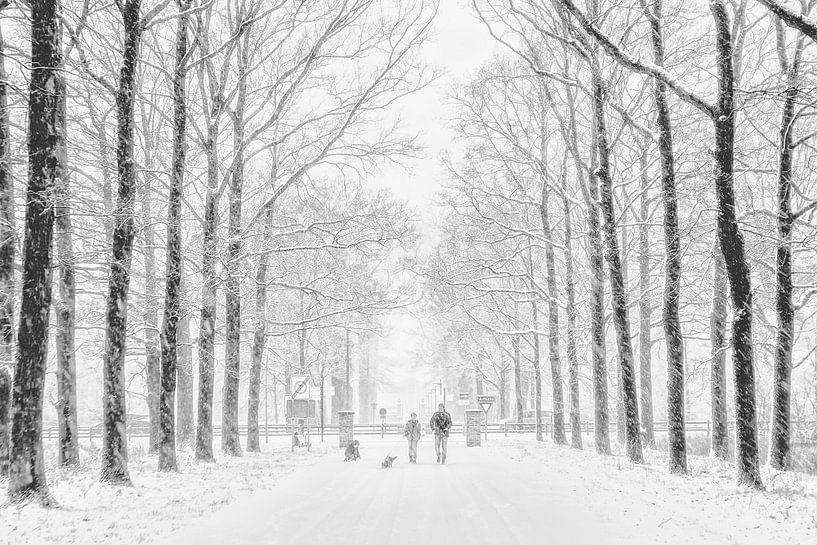Winter van Ruud van Ravenswaaij