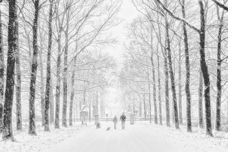 Winter von Ruud van Ravenswaaij