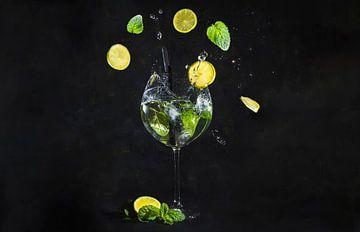Gin tonic à la menthe et au citron sur Corrine Ponsen