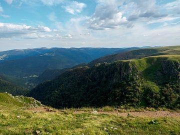 Landschap in de bergen Vogezen Frankrijk van Delphine Kesteloot