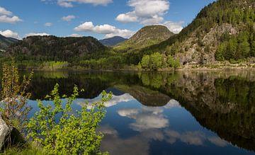 Hallingdal, Noorwegen van Adelheid Smitt