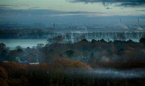 koude ochtend over Schoorl