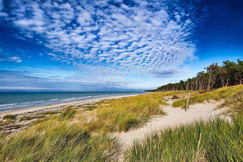 Oostzee - aan de Darß van Reiner Würz / RWFotoArt