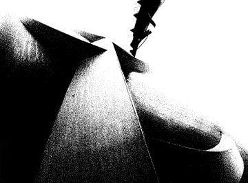 Noise. van Leendert van Luik