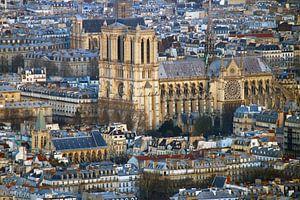Notre Dame de Paris van Michaelangelo Photo