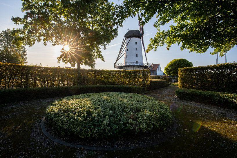 Lever de soleil au Moulin : le bon espoir à Menin sur Fotografie Krist / Top Foto Vlaanderen