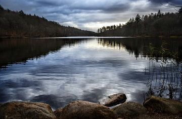 Waldsee mit reflektierenden Wolken, Naturhintergrund mit Kopierraum von Maren Winter