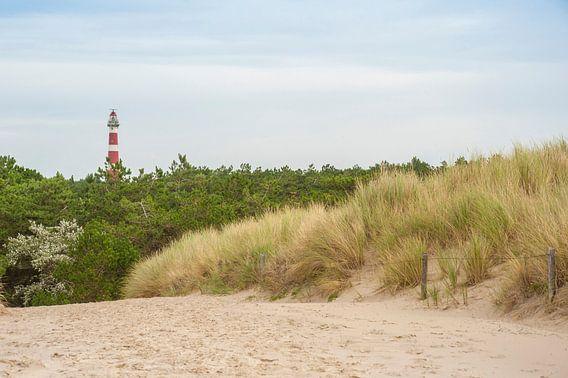 Vuurtoren duinen Ameland van Margreet Frowijn