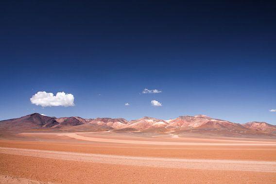 Salvador Dali Woestijn in Bolivia van Erwin Blekkenhorst
