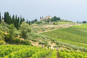Chianti streek Toscane Italie van Marianne Jonkman