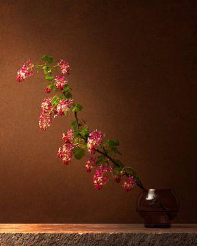 Des ribes rouges en fleurs, dans l'atmosphère des anciens maîtres sur Joske Kempink
