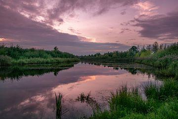 purple sky van Kim Lijnders