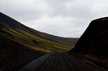 IJsland - verlaten weg van Willem van den Berge