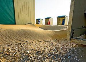 schelpen en strand