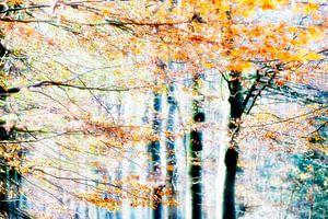 Like Painted Art # 6 van Fine Art Photography  * Paula van den Akker