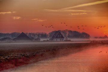 Wezenspyk in het ochtendgloren van Johan Habing