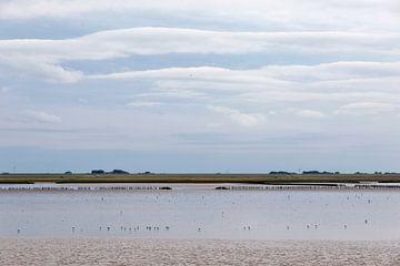 Küste.. von Miranda van Hulst