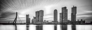 Skyline van Rotterdam met de kop van zuid