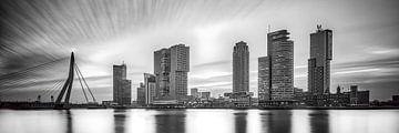 Skyline von Rotterdam von eric van der eijk