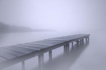 Nebel von Remco loeffen