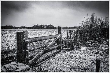 Zaun von Freddy Hoevers