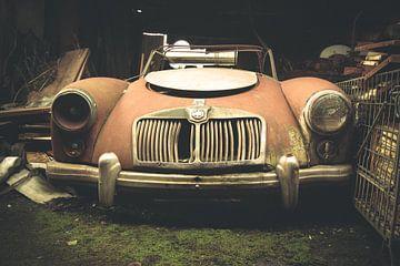 Auto im Rückgang von Tamara de Koning