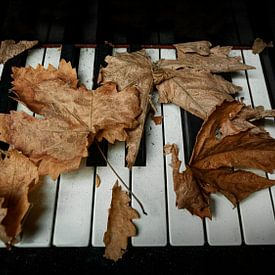That Old Piano I van Vincent Willems