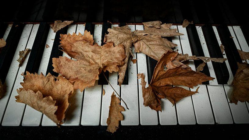 That Old Piano I von Vincent Willems