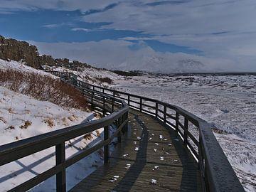 Houten voetgangersbrug in Þingvellir van Timon Schneider