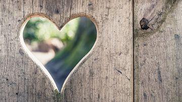 Uitgesneden Hartvorm in decoratieve houtsoort  van Fotografiecor .nl