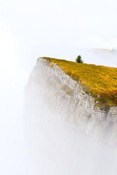 Bergnebel von Arjen Delmeer