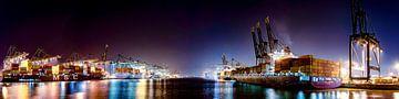 Panorama van de havens van Antwerpen