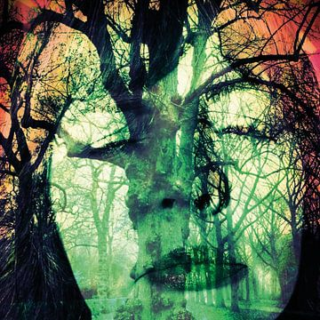 Forest Face von Dessin Destin