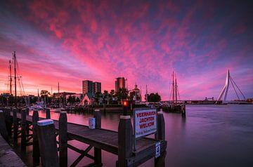 Veerhaven Rotterdam bij zonsondergang von Ilya Korzelius