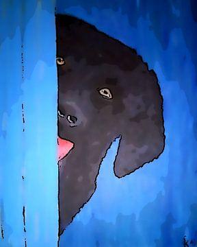 peek a boo blue comic van Aat Kuijpers