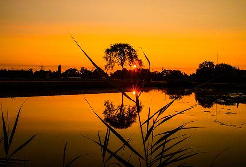 Zon op zien komen vanuit Moerenburg Tilburg van