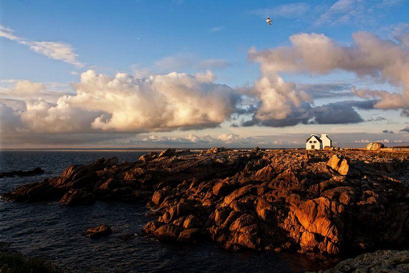 living on the rocks van Claudia Moeckel