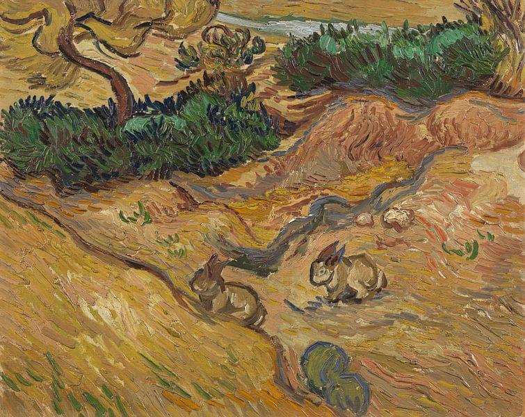 Vincent van Gogh, Landschap met konijnen van 1000 Schilderijen