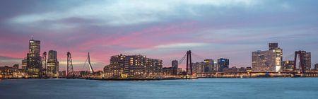 Panorama Kop van Zuid, Rotterdam