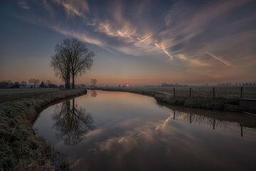Reflexionsbaum von Moetwil en van Dijk - Fotografie