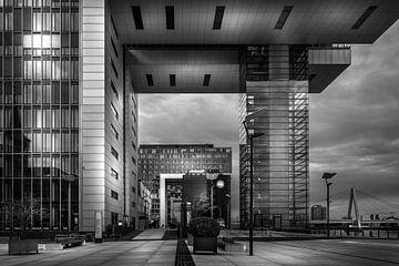 Les grues de Cologne sur Jens Korte