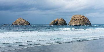 Oregon (VS) kust bij Cape Lookout von Rob IJsselstein