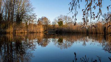 Kleine brug in Park Cronesteyn van Richard Steenvoorden