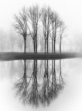 Gespiegelte Bäume von Karel Ton